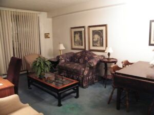 Executive Furnished Rentals - Short- or Long-Term - No Lease