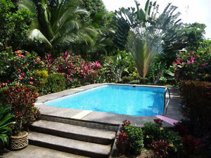Costa Rica - private oceanfront bungalow with private pool