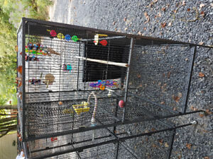 X-Large Flight Cage with Cover & Toys/Dishes