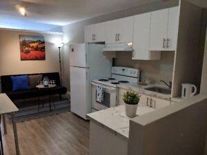 Newly Renovated ! Everything Included ! Minimum 4 months