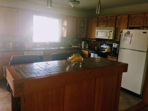 3 bedroom, renovated, upper level suite in a home