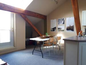 One Bedroom Loft in Downtown Galt