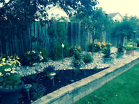 Hard Working Man garden and landscaping services
