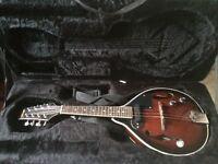 Stagg M50E Acoustic/Electric Mandolin & Rigid Case