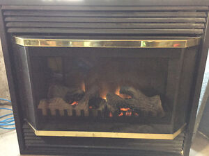 Electric Fireplace Insert For Sale