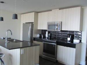 Beautiful New Bachelor Apartment  Close to Downtown