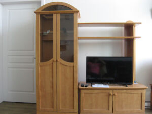 Meuble pour téléviseur et système de son avec portes vitrées