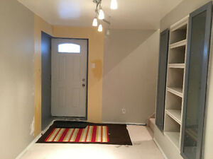 Basement in Taradale for 699 only