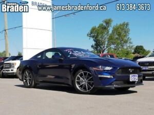 2019 Ford Mustang EcoBoost  - $249.63 B/W