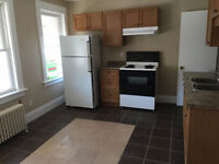 2 Bedroom Apartment + Downtown + Bus Route + SKY Light!