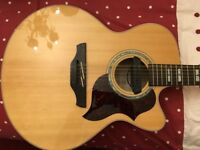 MINT Takamine 12 String + Case + Cooltube + Strap + Triax Pickup
