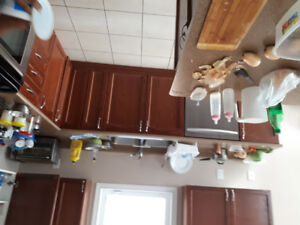 Laminate kitchen countertops and stainless steel sink for 99
