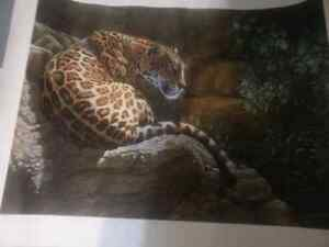 Carol Lacey ON THE ROCKS --Jaguar Signed and numbered 33/1000
