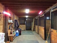 $275 incl. tax for pkg 8 private riding lessons - indoor arena!