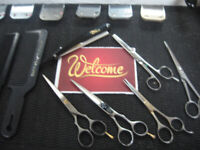 HAIR & THERE MOBILE HAIR STYLING/BARBER IN QUESNEL