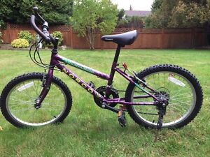 Norco kids bike (6- 8 year olds)