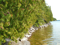 Manitoulin Island, LAKE MINDEMOYA WATERFRONT PROPERTY - 1.21A
