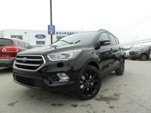2017 Ford Escape TITANIUM 2.0L ECO 300A