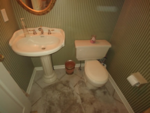 Pedestal Sink and Toilet - Almond