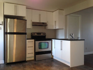 RENOVATED MODERN CONDO 1 BEDROOM 3.5 POINT ST CHARLES DOWNTOWN