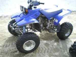warrior 350 2001 en excellente condition