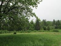 15.57 Acre Lot ,,With Well.. 10 Minutes From Hampton