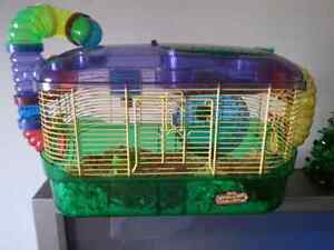 LF female hamster with cage for free