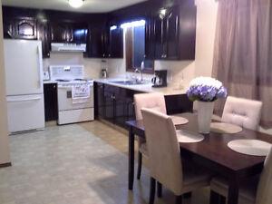 PRICE REDUCED! 3 Suite, Up/Down duplex, Beautiful Renovations!! Regina Regina Area image 3