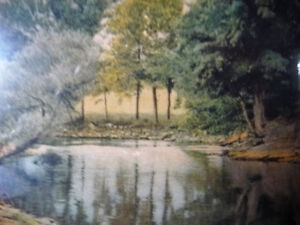 """Antique Colored Photo After Wallace Nutting """"Reflections"""" 1920's Stratford Kitchener Area image 6"""