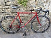 Custom built road bike - Steel is real!