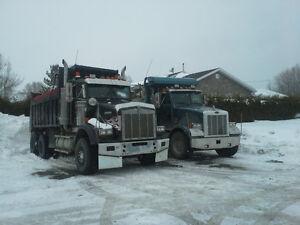 transport en vrac, terassement, excavation. terre tamisé Saguenay Saguenay-Lac-Saint-Jean image 2