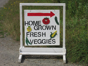 Fresh home grown vegetables for sale