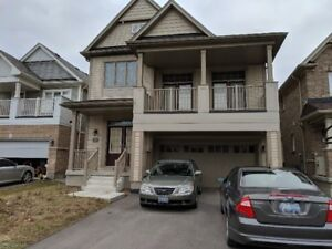 ** Brand new upgraded 3 bedroom house for rent!**