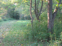 Private Waterfront Lot for Sale - Hay Bay