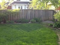 100 ft wood fencing