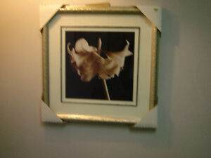 Buy any home decor pictures and get 50% off the regular price. Regina Regina Area image 5