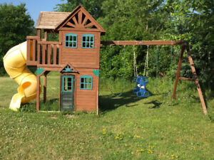 CEDAR SUMMIT PLAY STRUCTURE from COSTCO
