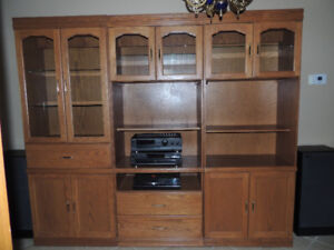 Furniture- bookcases and shelving units