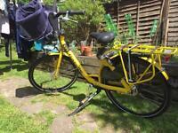 Cargo gazelle Bike