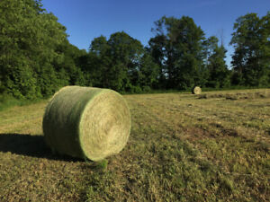 Custom Hay Cutting and Baling