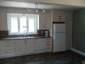All renovated apartment near Vanier Parkway available Nov 1st