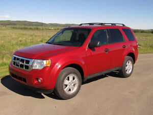 2011 Ford Escape XLT V6 4x4