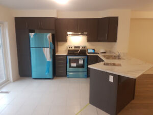 Amazing Brand new 3 Bedroom 3 W/R townhouse for rent in Milton