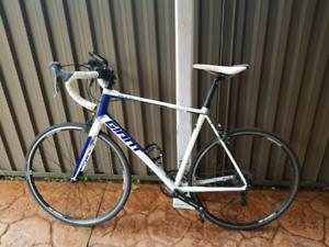 Giant Defy Aluxx L Road Bike