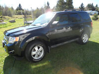 REDUCED!!!! 2011 Ford Escape XLT,4X4, WARRANTY