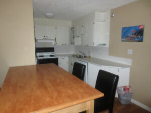 Two bedroom Condo Close to Trendy 17th Ave.