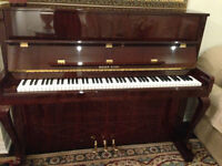 PIANO  MINT - Rieger-Kloss Piano and Bench