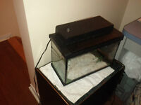 16 x 10 x 8.5 inches Aquarium with Filter and Light (23 Liters)