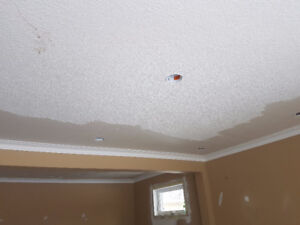 POPCORN CEILING REMOVAL , STUCCO REMOVAL..
