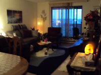 Beautiful bright one bedroom St. James area